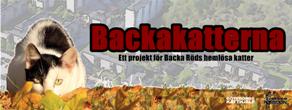 backaliten